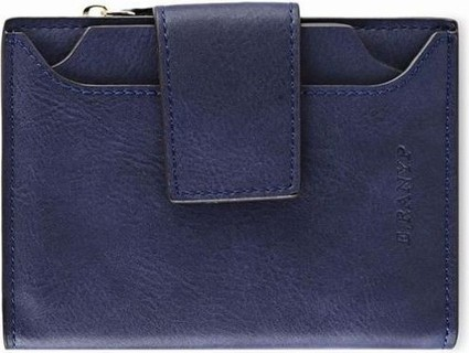 Fashion Women's Frosted Mini Purse - Sapphire Blue