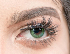 Vision Color Tgvc6 Contact Lens - Forest Green