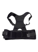 Generic Magnetic Back Posture Lumbar Support